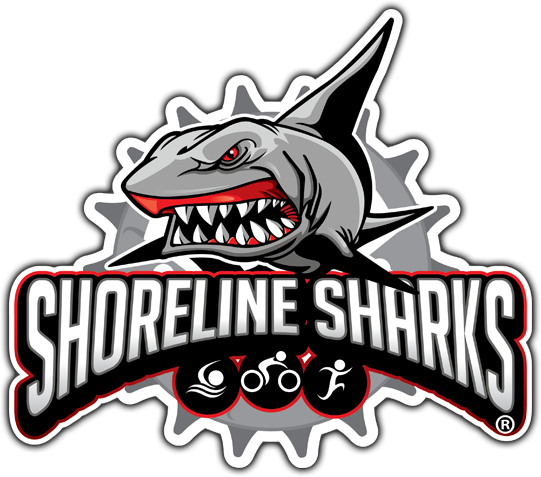 Shorline Sharks